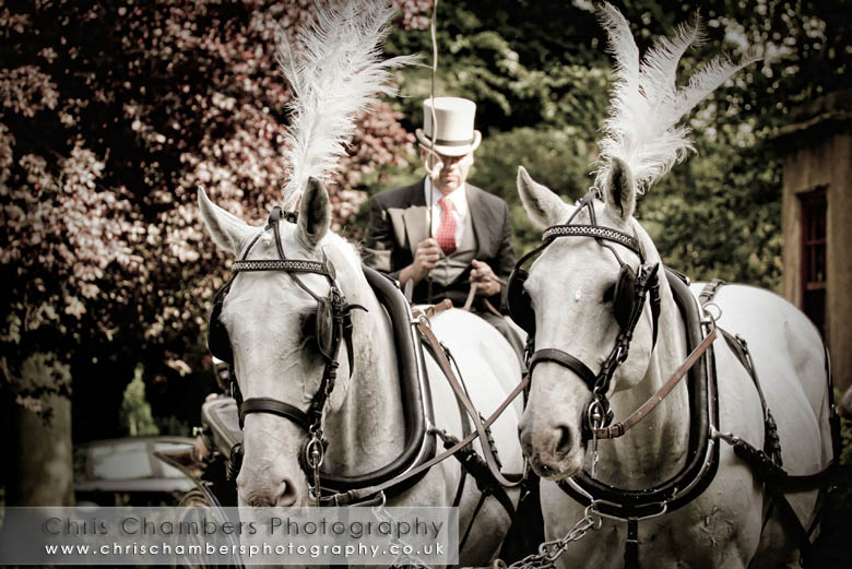 Bride and groom in a horse and carriage